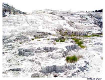 Mammoth Hot Springs 2003