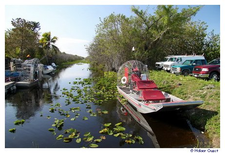 Tamiami Trail - Propellerbooten - Airboat