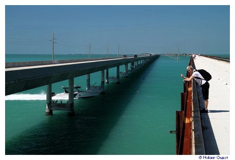 Ela auf der Seven Mile Bridge Florida Keys