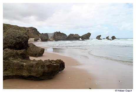 Bathsheba - Barbados