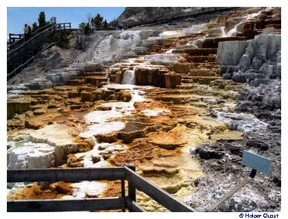 Mammoth Hot Springs 1998