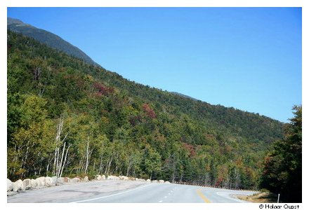 White Mountains National Forrest