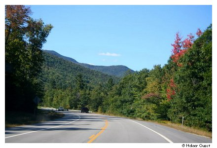Indian Summer - White Mountains National Forrest